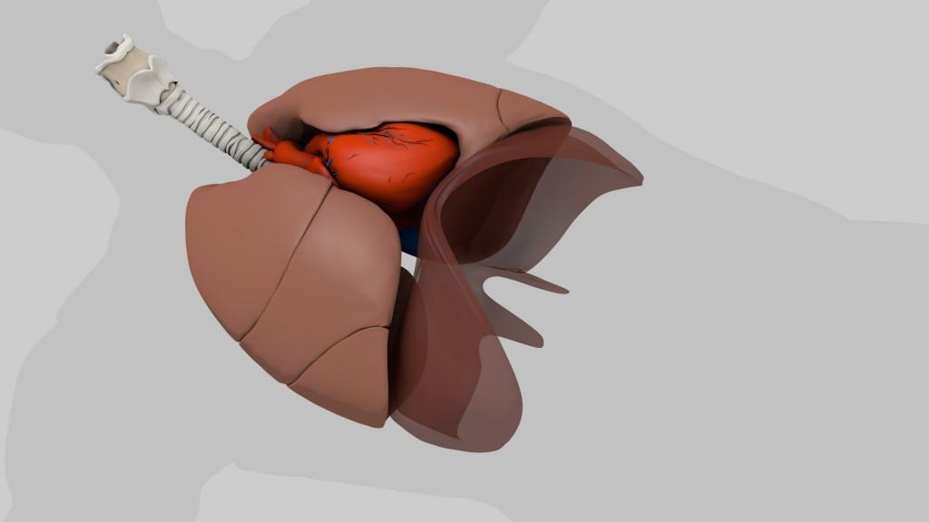 Lung_Biopsy